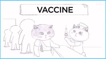 How vaccine works
